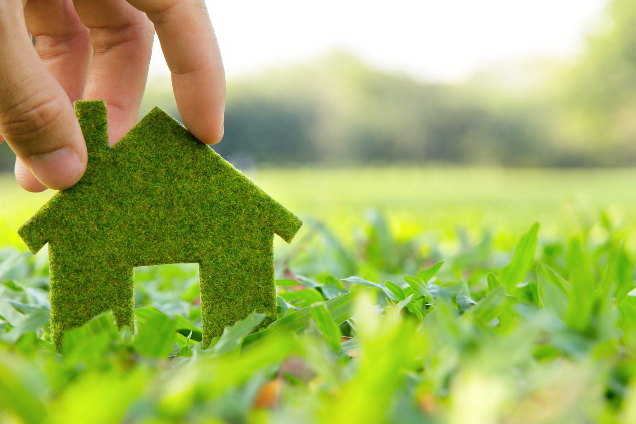 5 Ways To Add Value To Your Home By Going Green Top